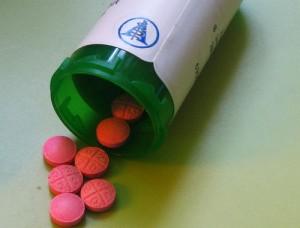 leki-dla-psa
